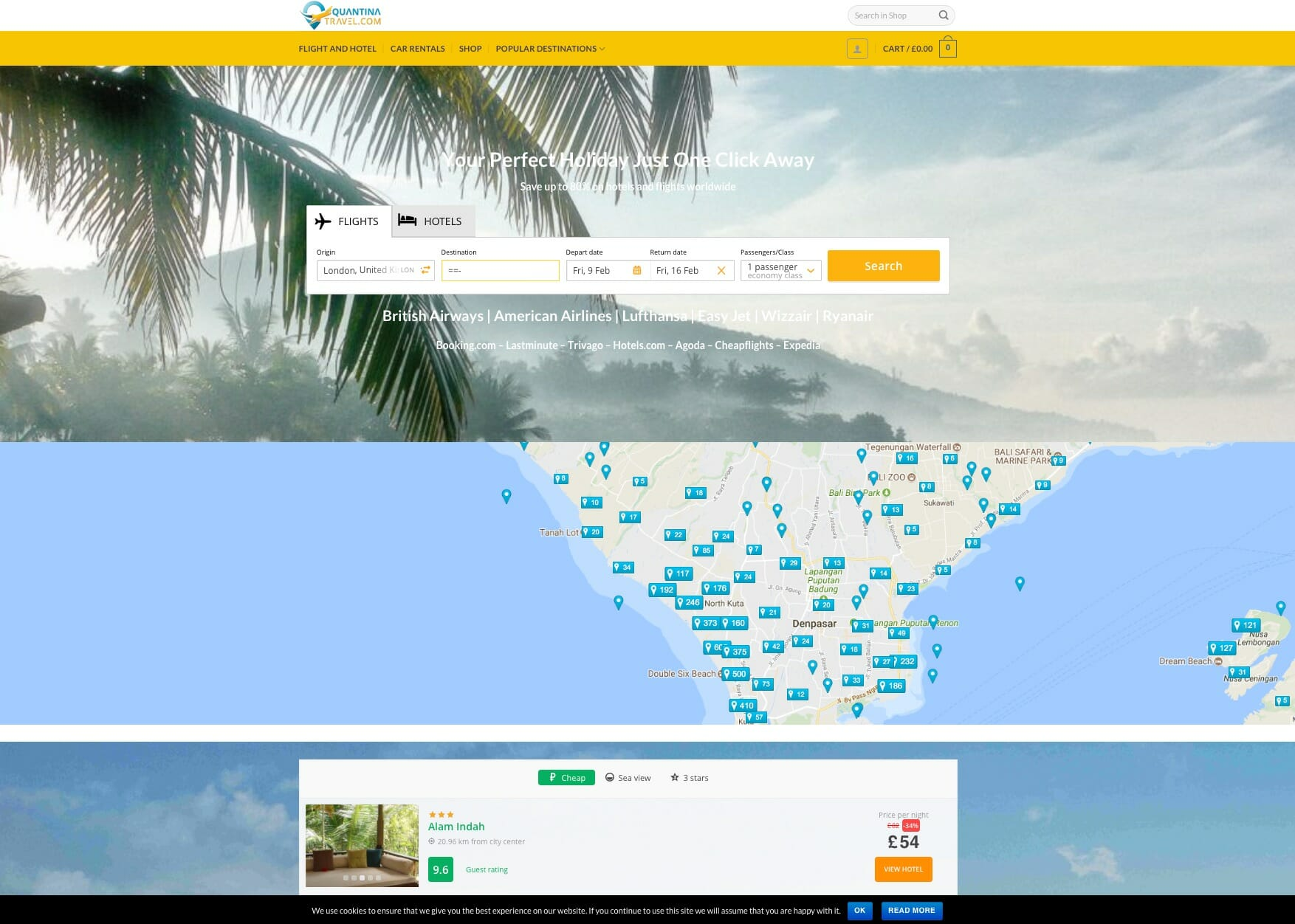 Travel Search Website Design